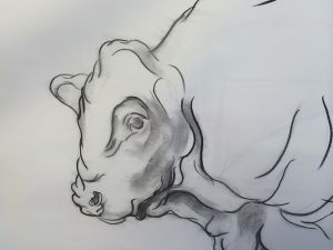 Study Of Bull - Peter Walker Sculptor